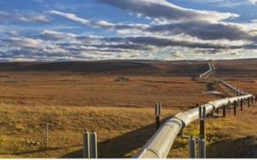 Shell may lose out in gas competition